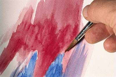 Caucasian Hand Grasping A Paint Brush Poster by Brian Gordon Green
