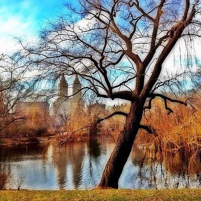 #centralpark #park #outdoor #nature #ny Poster