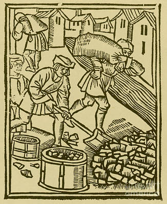 Charcoal Burners, Medieval Tradesmen Poster by Science Source