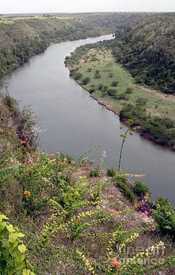 Chavon River View Poster