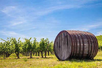 Chianti Wineyard Poster by Paolo Modena