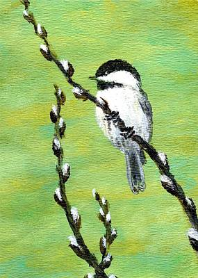 Chickadee On Pussy Willow - Bird 2 Poster