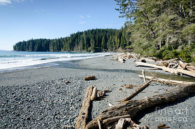 China Wide China Beach Juan De Fuca Provincial Park Vancouver Island Bc Canada Poster by Andy Smy