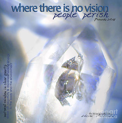 Poster featuring the photograph Clear White Vision by Vicki Ferrari