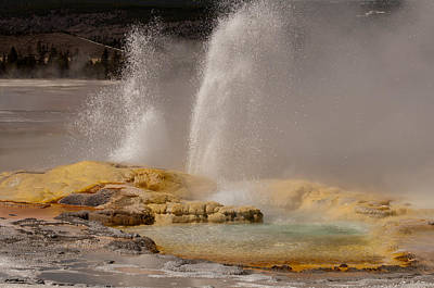 Clepsydra Geyser Yellowstone National Park Poster
