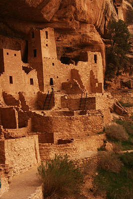 Cliff Palace Mesa Verde National Park Poster