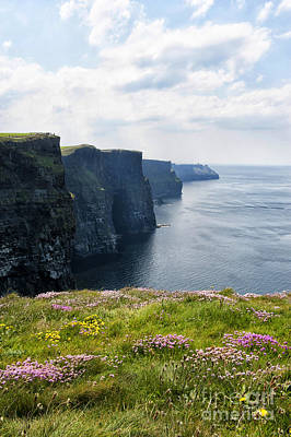 Cliffs Of Moher In Spring Poster by Cheryl Davis