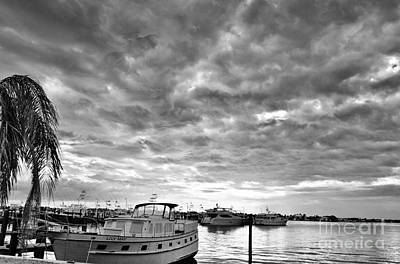 Clouds Over The Lily May B-w Poster