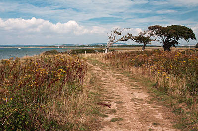 Coastal Path Poster by Shirley Mitchell