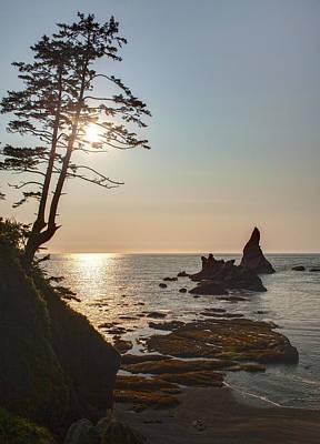 Coastal Sunstar Poster