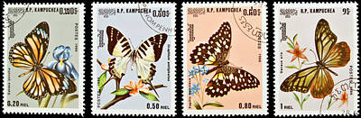 Collection Of Butterflies Stamps. Poster by Fernando Barozza