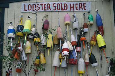 Colorful Lobster Buoys Hang On A New Poster by Stephen St. John