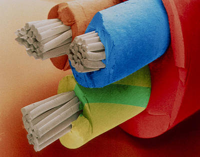 Coloured Sem Of 3-core Electric Cable. Poster by Power And Syred
