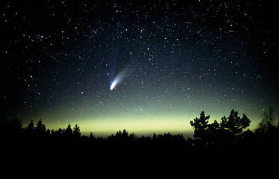 Comet Hale-bopp And Aurora Borealis, 30 March 1997 Poster by Pekka Parviainen