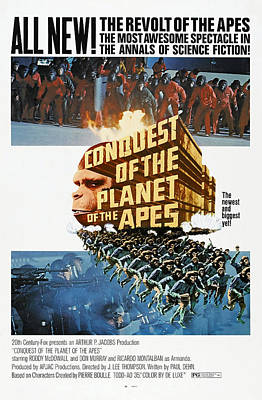 Conquest Of The Planet Of The Apes Poster by Everett