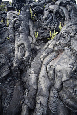 Cooled Pahoehoe Lava Poster