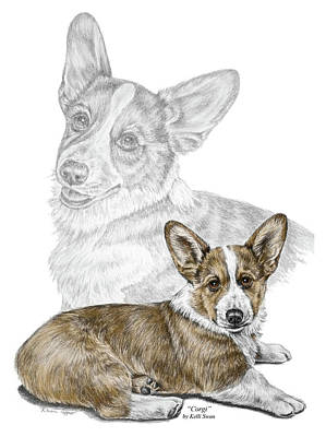 Poster featuring the drawing Corgi Dog Art Print Color Tinted by Kelli Swan