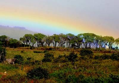 Poster featuring the photograph Costa Rica Rainbow by Myrna Bradshaw