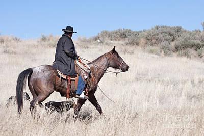 Cowboy On Horseback Poster by Cindy Singleton