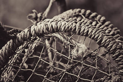 Poster featuring the photograph Crab Cage by Justin Albrecht