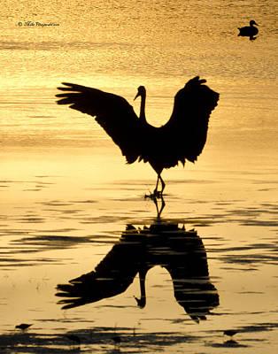 Crane Silhouette Poster
