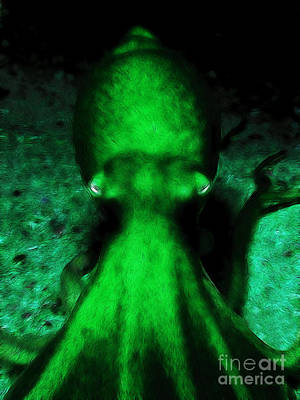 Creatures Of The Deep - The Octopus - V4 - Green Poster by Wingsdomain Art and Photography