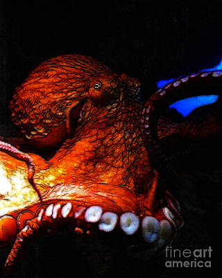 Creatures Of The Deep - The Octopus - V6 - Orange Poster by Wingsdomain Art and Photography