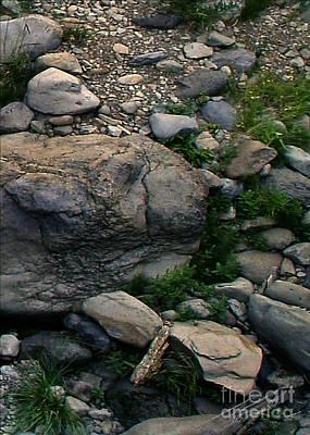 Creek Flow Panel 5 Poster