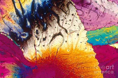 Crystal Retinal Poster by Michael W. Davidson
