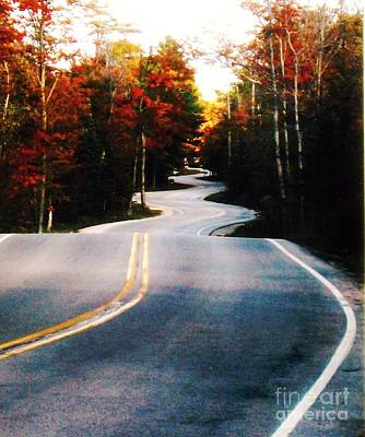 Curvy Road In The Fall Poster by Marsha Heiken