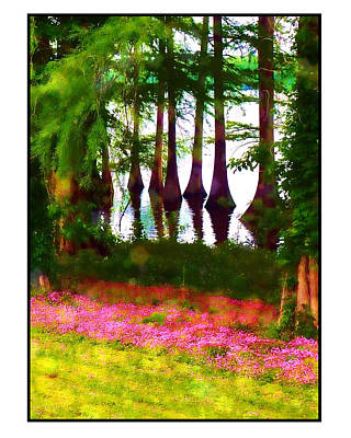 Poster featuring the photograph Cypress With Oxalis by Judi Bagwell