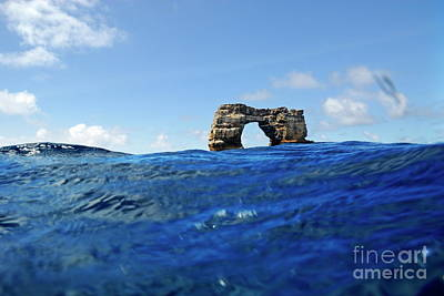 Darwin's Arch By Sea Level Poster by Sami Sarkis
