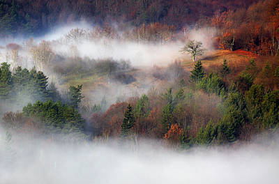Poster featuring the photograph Dawn Mists Slovenia by Graham Hawcroft pixsellpix