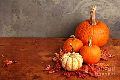 Poster featuring the photograph Decorative Fall Pumpkins by Verena Matthew