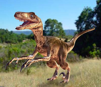 Deinonychus Dinosaur Poster by Roger Harris