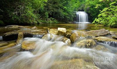 Dense Forest Waterfall Poster by Matt Tilghman