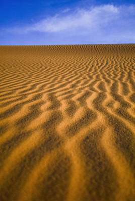 Desert Poster by Axiom Photographic