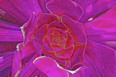 Desert Bloom Poster by James Mancini Heath