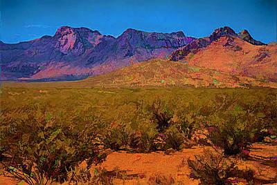 Desert Vista Poster by Anne Rodkin