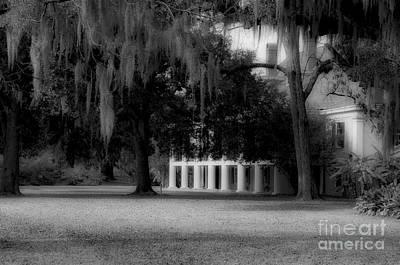 Destrehan Plantation In Black And White Poster by Kathleen K Parker