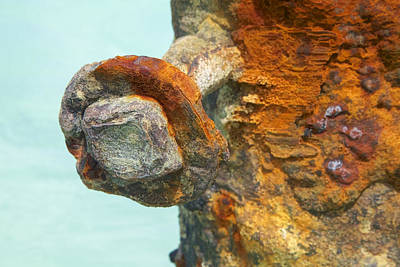 Detail Of A Rusted Dock Pier Iv Poster by David Letts