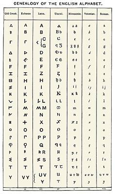 Development Of The English Alphabet Poster by Sheila Terry