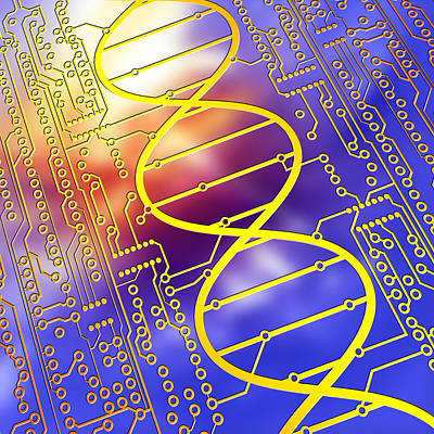 Dna Circuit Board Poster
