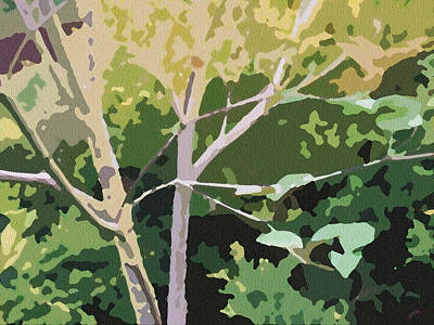 Dogwood I Poster by Katharine Birkett
