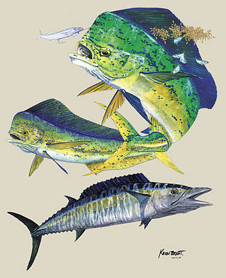 Dolphin And Wahoo Poster by Kevin Brant