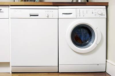 Domestic Dishwasher And Washing Machine Poster