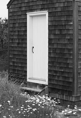 Doorway By The Sea Cape Cod National Seashore Poster by Michelle Wiarda