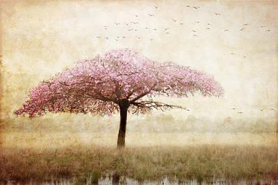 Dreaming Poster by Margaret Hormann Bfa