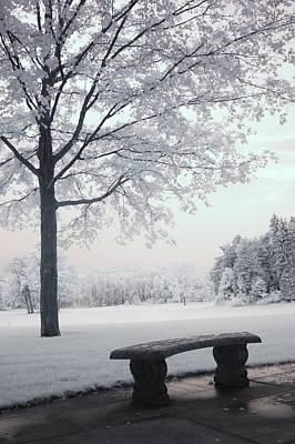 Dreamy White Blue Infrared Michigan Landscape Poster