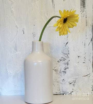 Droopy Day Daisy Poster by Marsha Heiken